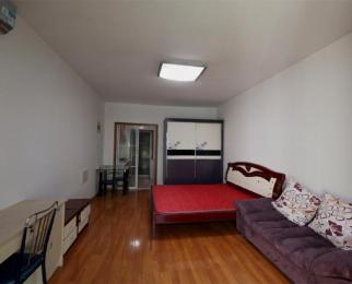 同仁康桥水岸 亲情公寓 新出单室套超大阳台 超低价出租
