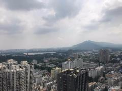 玄武区珠江路华利国际大厦