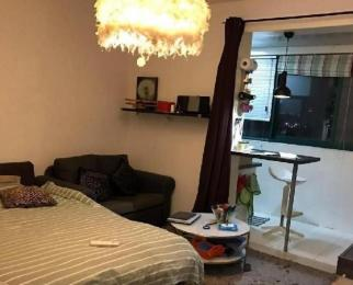 南京南站双龙大道地铁站精装单身公寓家电齐全拎包入住带