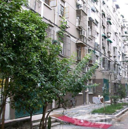 小市村2室1厅1卫45平方产权房简装
