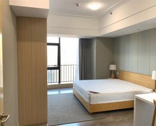 宴南斗豪华精装修公寓 拎包入住 可月付 交通便捷近南京南