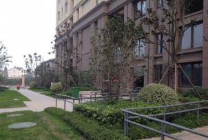 朗诗青春街区,南京朗诗青春街区二手房租房