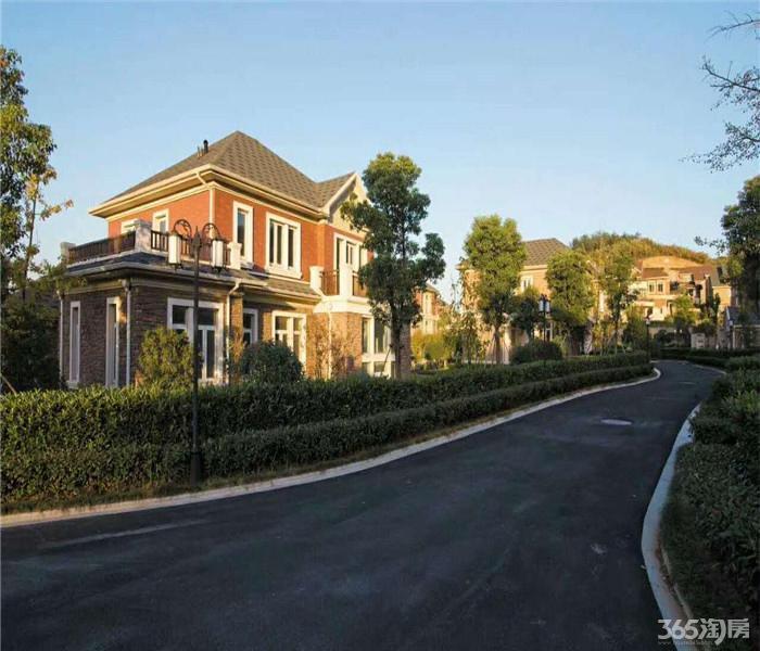 仙林东香山庄园独栋温泉入户山水别墅低总价1000平以上大院子