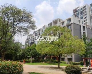 九龙湖恒大绿洲旁 合家春天精装单身公寓 有电梯拎包入住